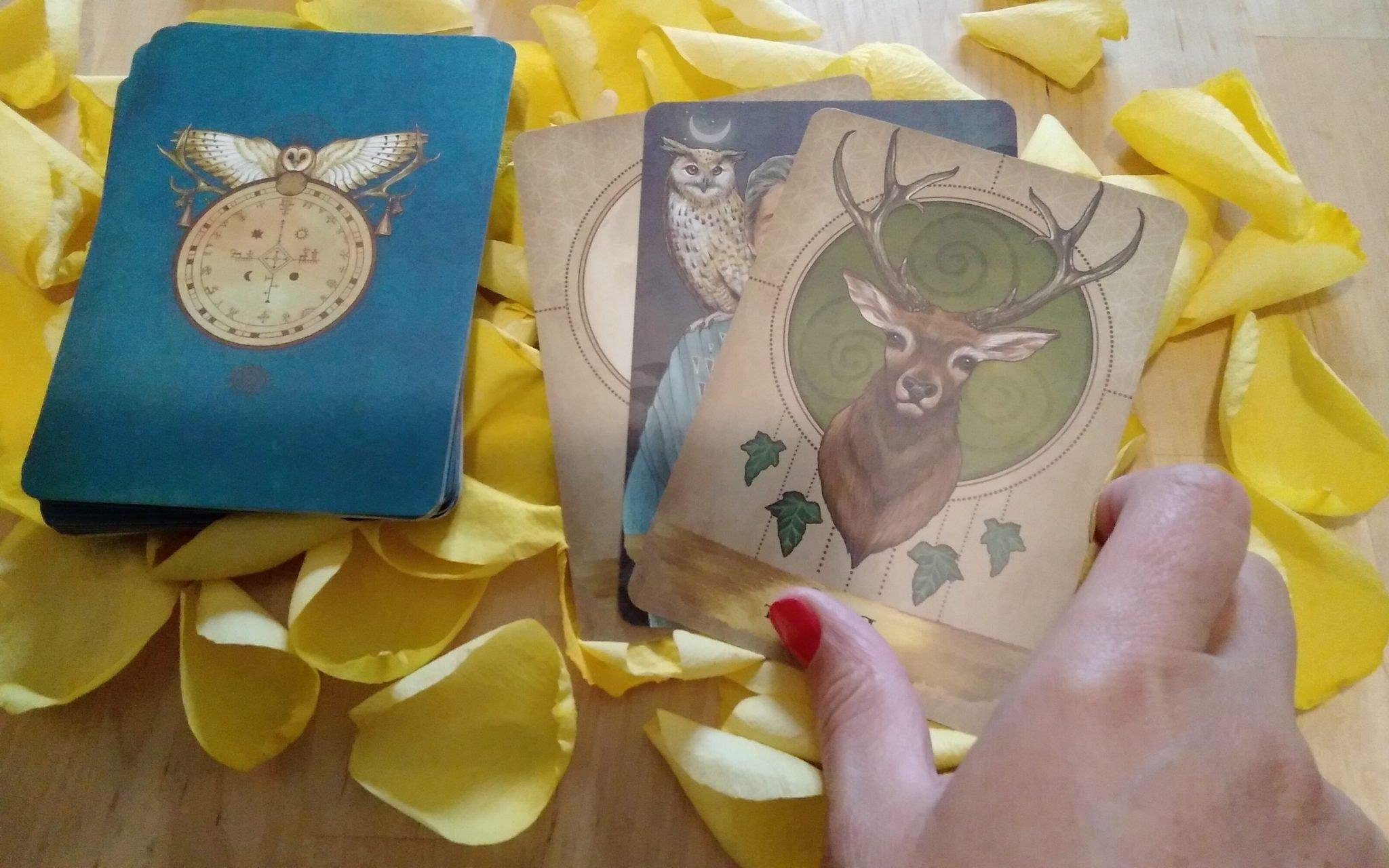 Tarot Reader Bucharest